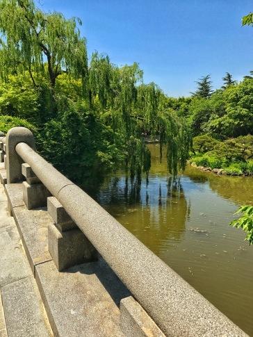 A stroll through the temple's garden